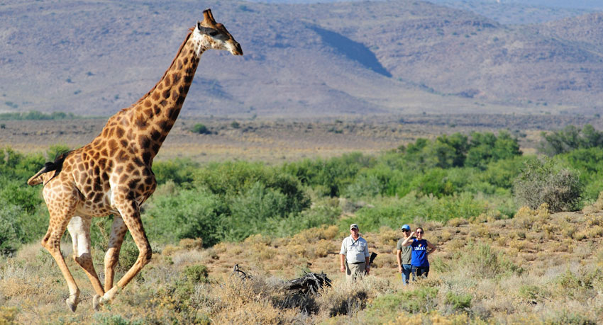 Christmas vacation in South Africa