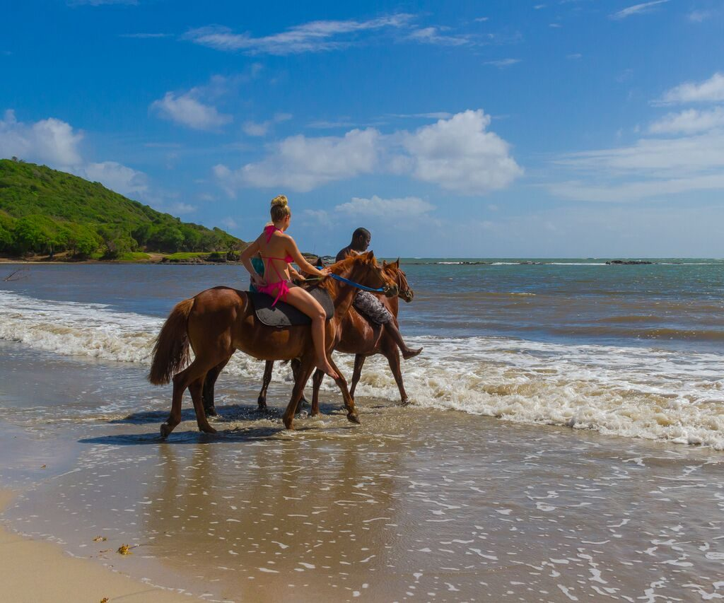 Best Tour Company in St.Lucia