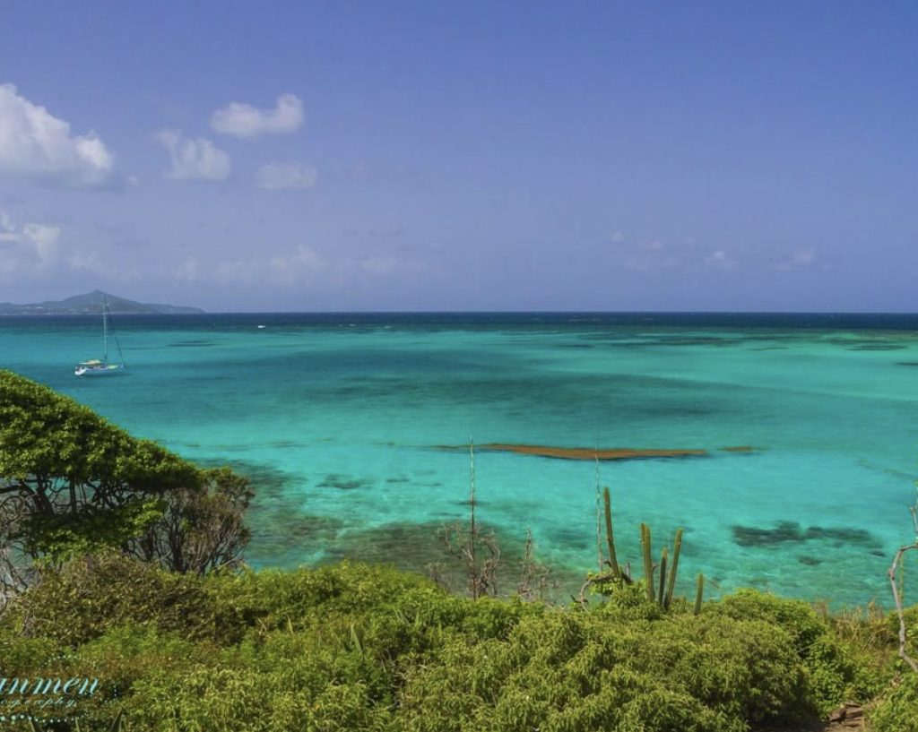 Things to do in St. Vincent and the Grenadines